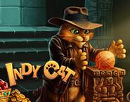 Indy Γάτα